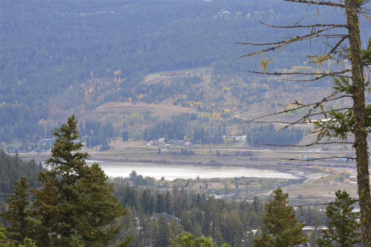 Main Photo: 920 FOX MOUNTAIN Road in Williams Lake: Williams Lake - Rural North Land for sale (Williams Lake (Zone 27))  : MLS®# R2411162