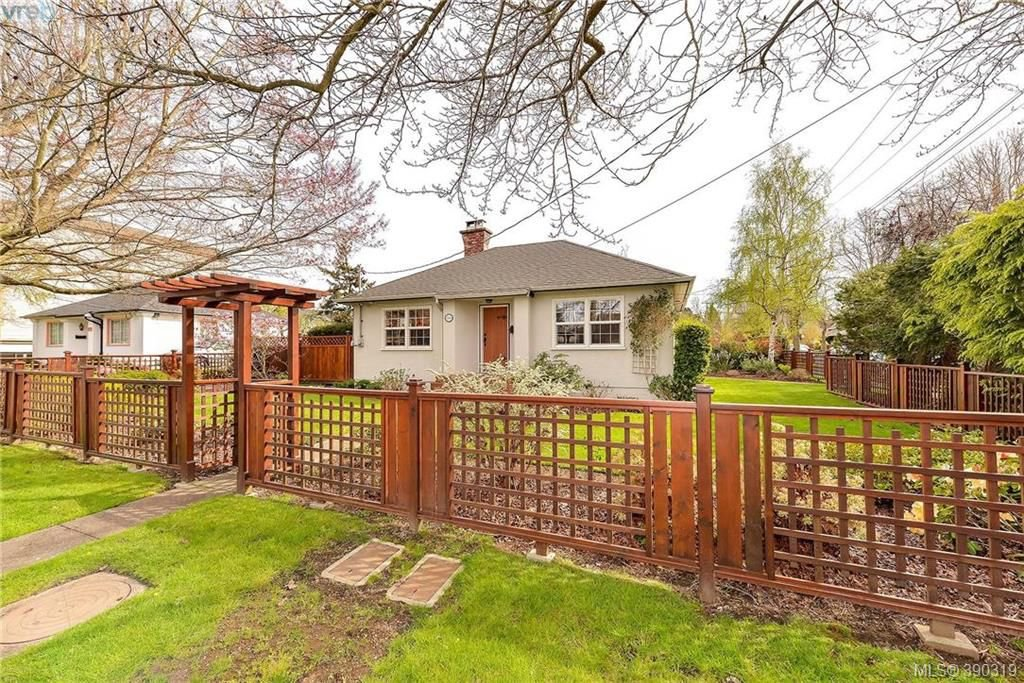 Main Photo: 1559 Bay St in VICTORIA: Vi Fernwood Single Family Detached for sale (Victoria)  : MLS®# 784514