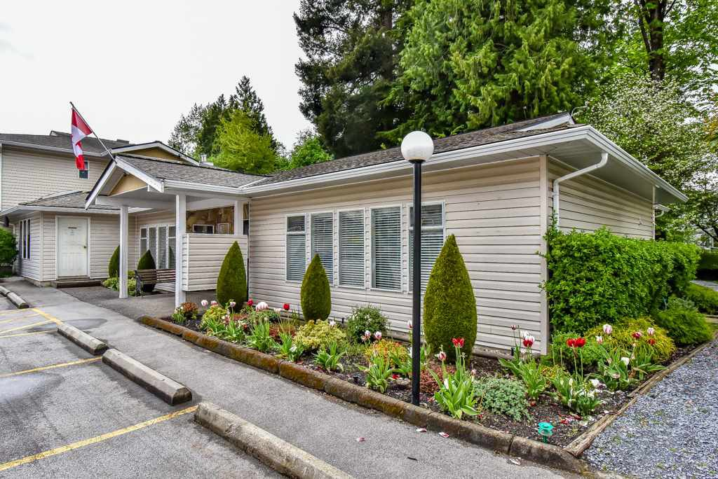 """Photo 18: Photos: 105 10584 153RD Street in Surrey: Guildford Townhouse for sale in """"Glenwood Village"""" (North Surrey)  : MLS®# R2266261"""