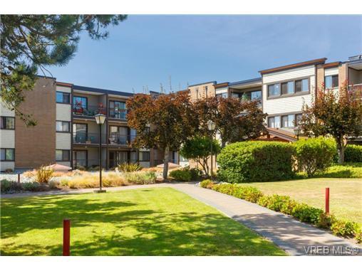 Main Photo: 224 1870 McKenzie Ave in VICTORIA: SE Gordon Head Condo Apartment for sale (Saanich East)  : MLS®# 710680