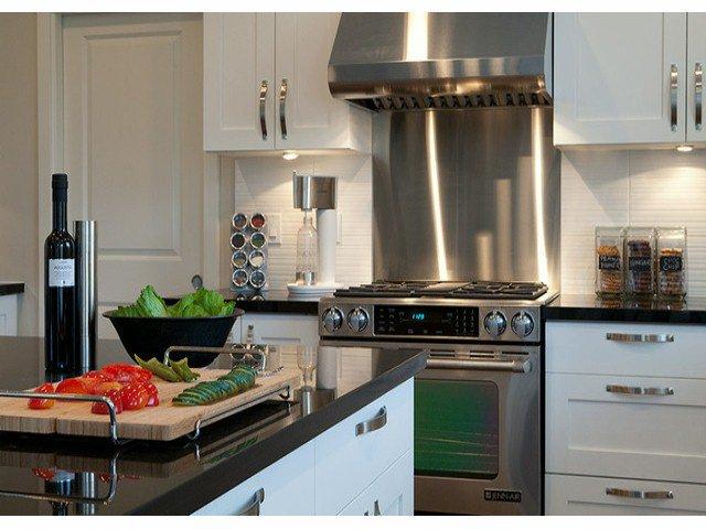 Photo 2: Photos: 17326 1 Avenue in Surrey: Pacific Douglas House for sale : MLS®# F1301262
