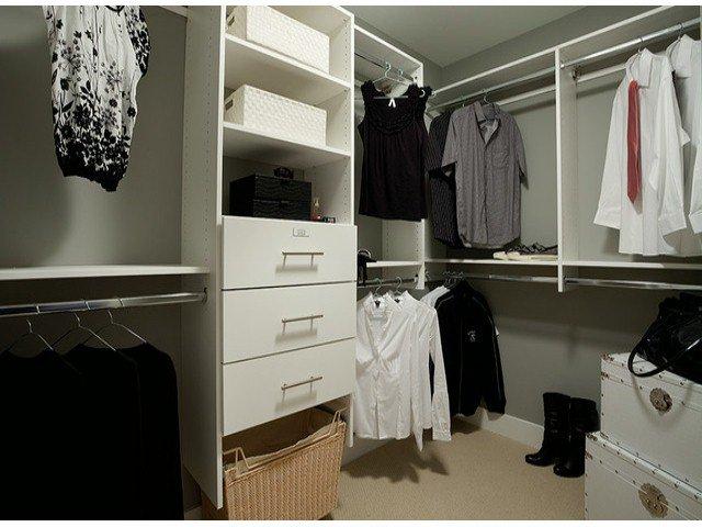 Photo 4: Photos: 17326 1 Avenue in Surrey: Pacific Douglas House for sale : MLS®# F1301262