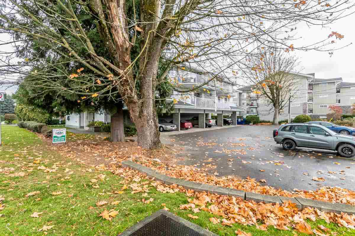 "Main Photo: 205 33225 OLD YALE Road in Abbotsford: Central Abbotsford Condo for sale in ""CEDAR GROVE ESTATES"" : MLS®# R2218353"