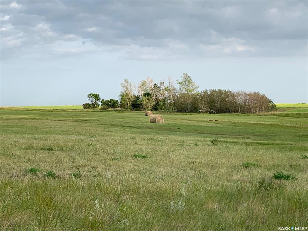 Main Photo: 36.43 ACRES - FINDLATER in Findlater: Lot/Land for sale : MLS®# SK826960