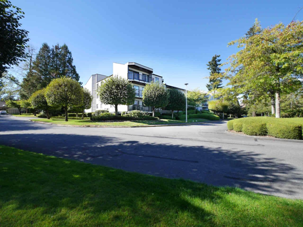 "Main Photo: 213 9952 149 Street in Surrey: Guildford Condo for sale in ""Tall Timbers"" (North Surrey)  : MLS®# R2111678"
