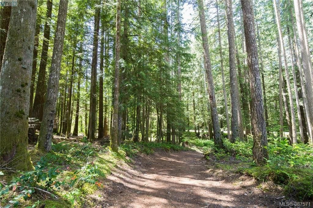 Main Photo: Lot A West Shawnigan Lake Road in SHAWNIGAN LAKE: ML Shawnigan Lake Land for sale (Malahat & Area)  : MLS®# 387571