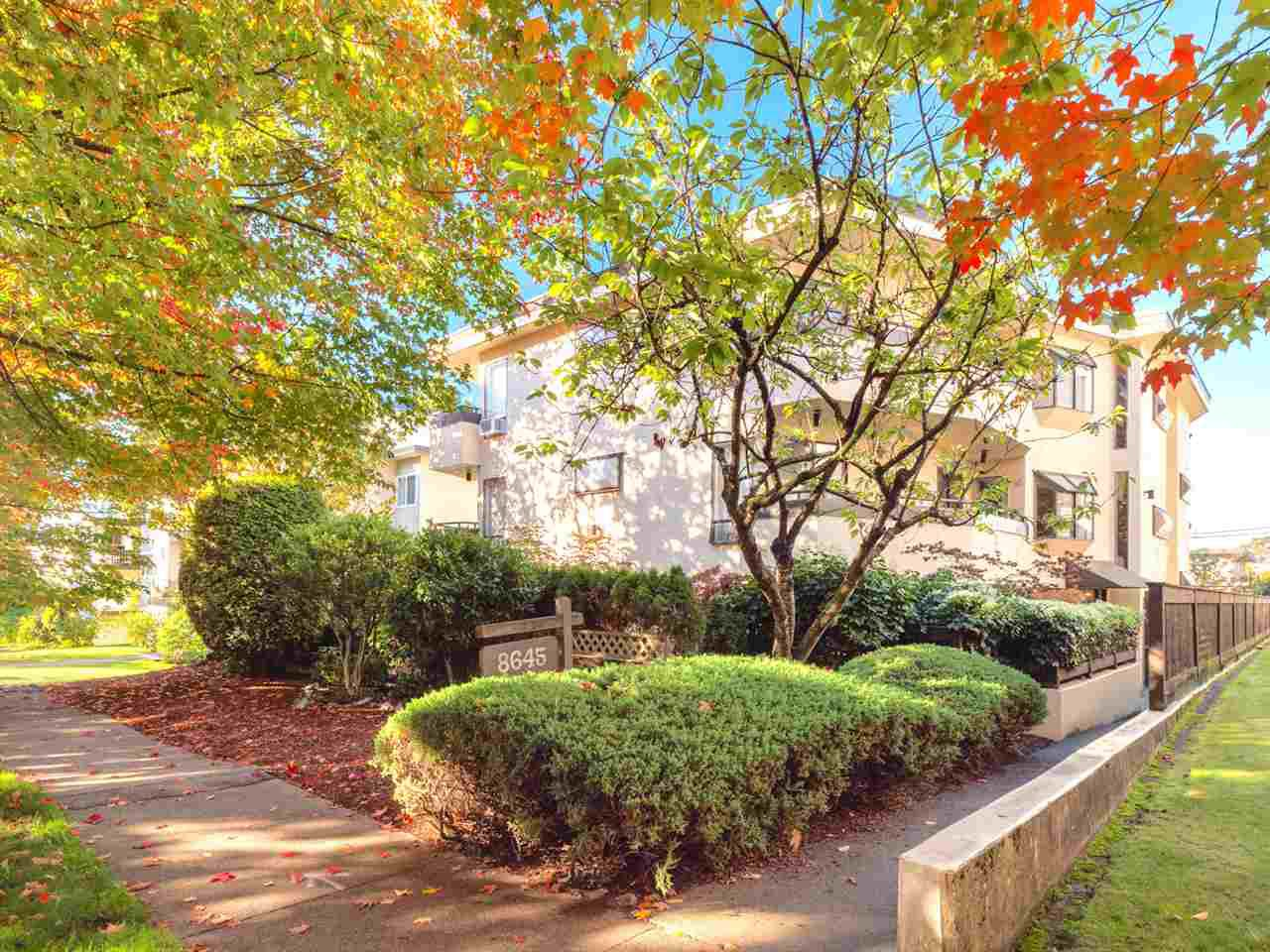Photo 19: Photos: 101 8645 OSLER Street in Vancouver: Marpole Condo for sale (Vancouver West)  : MLS®# R2311470