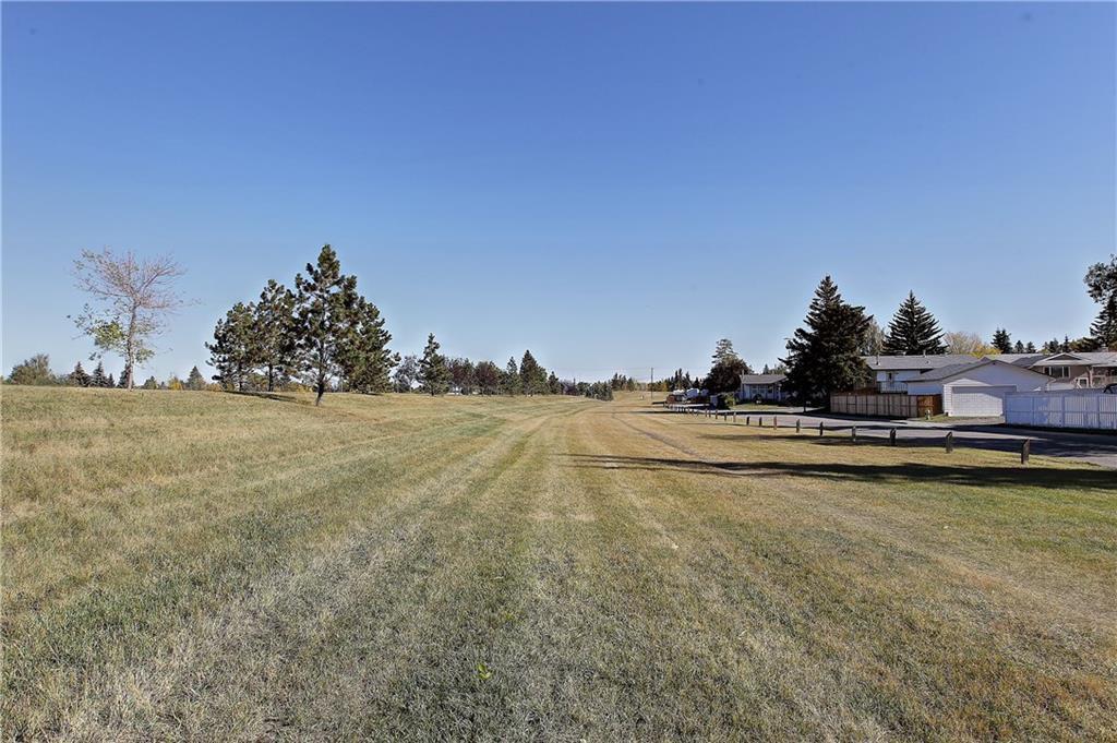 Photo 35: Photos: 252 QUEEN ALEXANDRA Road SE in Calgary: Queensland Detached for sale : MLS®# C4215983