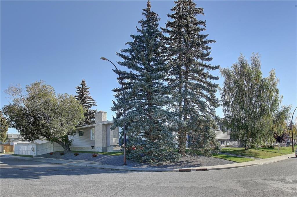 Photo 34: Photos: 252 QUEEN ALEXANDRA Road SE in Calgary: Queensland Detached for sale : MLS®# C4215983