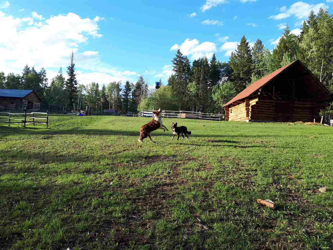 Photo 11: Photos: 3750 PARADISE Drive in Williams Lake: Williams Lake - Rural East House for sale (Williams Lake (Zone 27))  : MLS®# R2350243