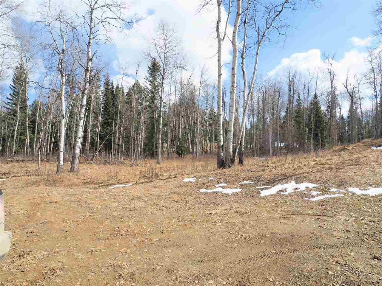 Main Photo: LOT C LITTLE FORT 24 Highway in Bridge Lake: Bridge Lake/Sheridan Lake Land for sale (100 Mile House (Zone 10))  : MLS®# R2092235