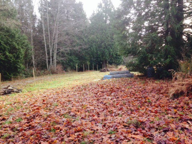 Photo 6: Photos: LOT 17 INGLIS Road in Gibsons: Gibsons & Area Land for sale (Sunshine Coast)  : MLS®# R2227805