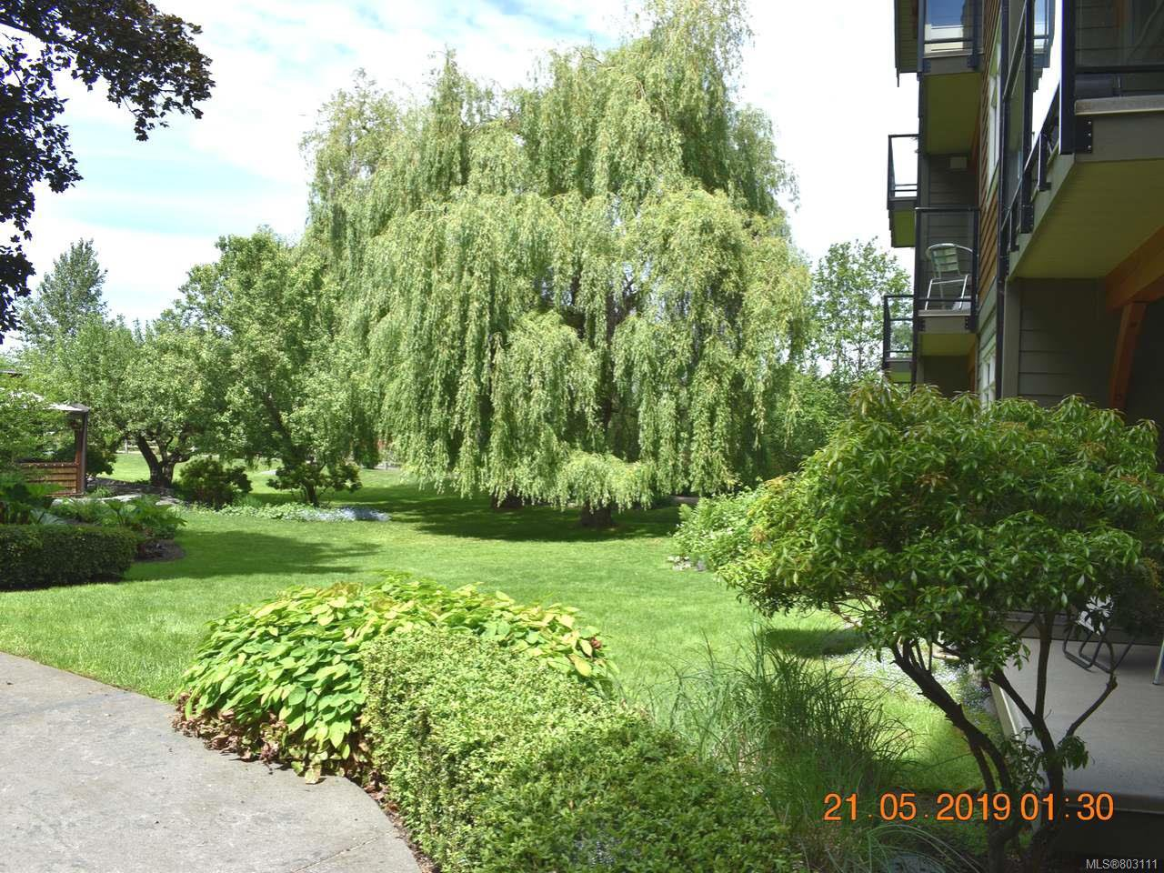 Main Photo: 107 1800 Riverside Lane in COURTENAY: CV Courtenay City Condo Apartment for sale (Comox Valley)  : MLS®# 803111