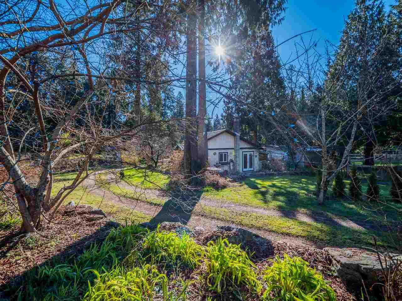 Photo 17: Photos: 3592 BEACH Avenue: Roberts Creek House for sale (Sunshine Coast)  : MLS®# R2244747