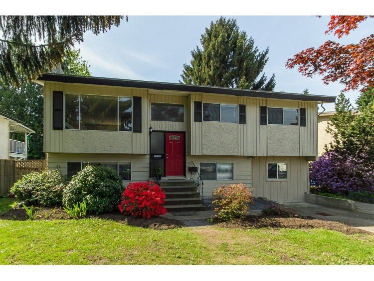 Main Photo: 11771 GRAVES Street in Maple Ridge: Southwest Maple Ridge House for sale : MLS®# R2059887