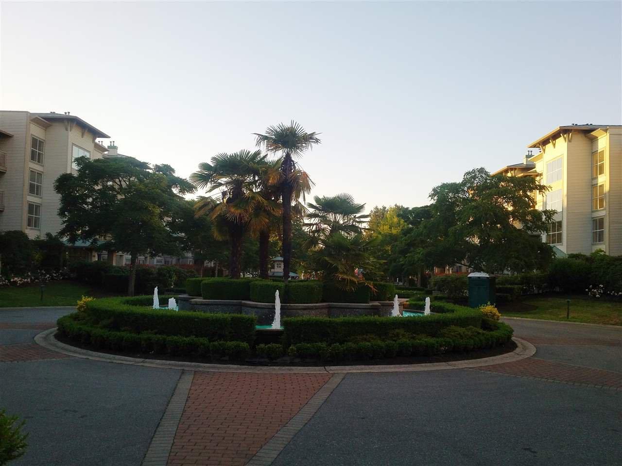 The Laguna Complex