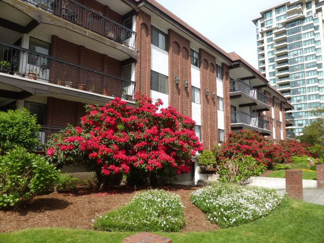 Main Photo: 201 625 HAMILTON Street in New Westminster: Uptown NW Condo for sale : MLS®# R2062051