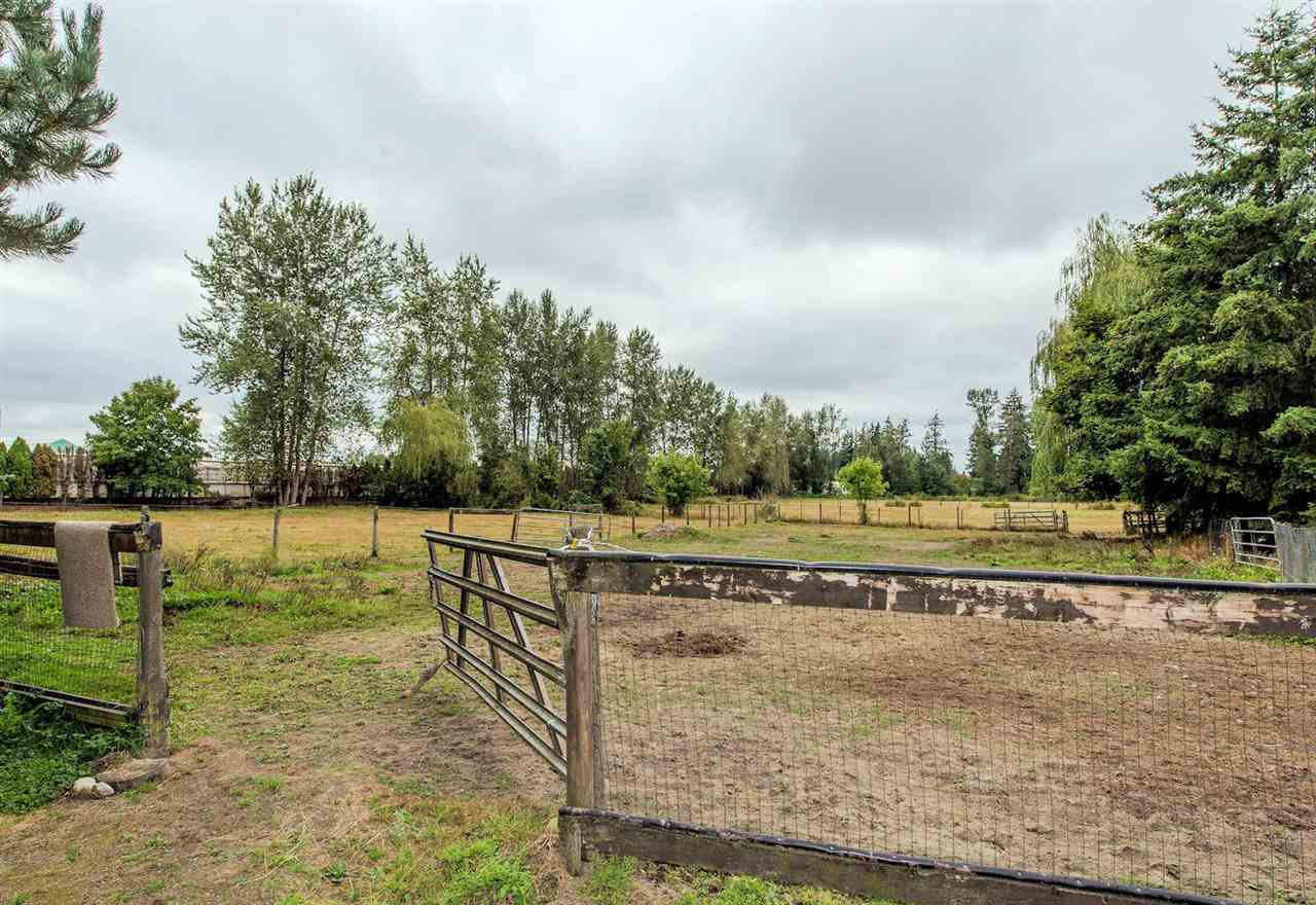 """Photo 19: Photos: 5341 256 Street in Langley: Salmon River House for sale in """"Salmon River"""" : MLS®# R2338105"""