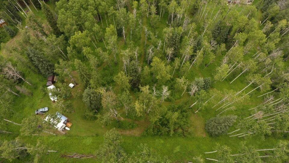 Main Photo: NW-10-29-5W5-LOT 4 Lot 4: Rural Mountain View County Land for sale : MLS®# C4306026