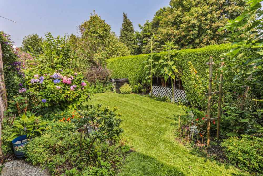 Photo 6: Photos: 1607 MANNING Avenue in Port Coquitlam: Glenwood PQ House for sale : MLS®# R2198813