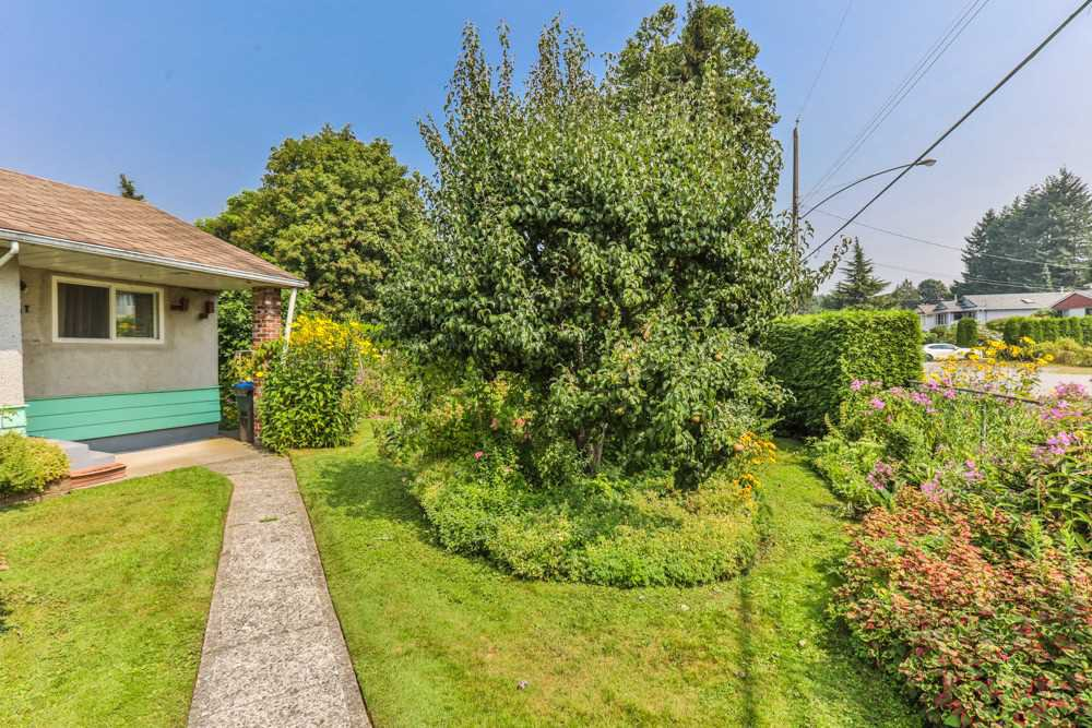 Photo 4: Photos: 1607 MANNING Avenue in Port Coquitlam: Glenwood PQ House for sale : MLS®# R2198813