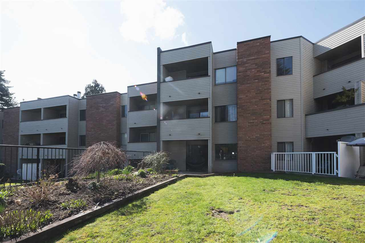 """Main Photo: 107 615 NORTH Road in Coquitlam: Coquitlam West Condo for sale in """"NORFOLK MANOR"""" : MLS®# R2152631"""