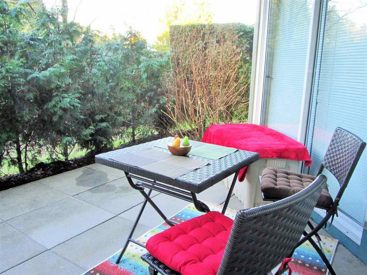 Photo 17: Photos: 114 15110 108 Avenue in Surrey: Bolivar Heights Condo for sale (North Surrey)  : MLS®# R2239803