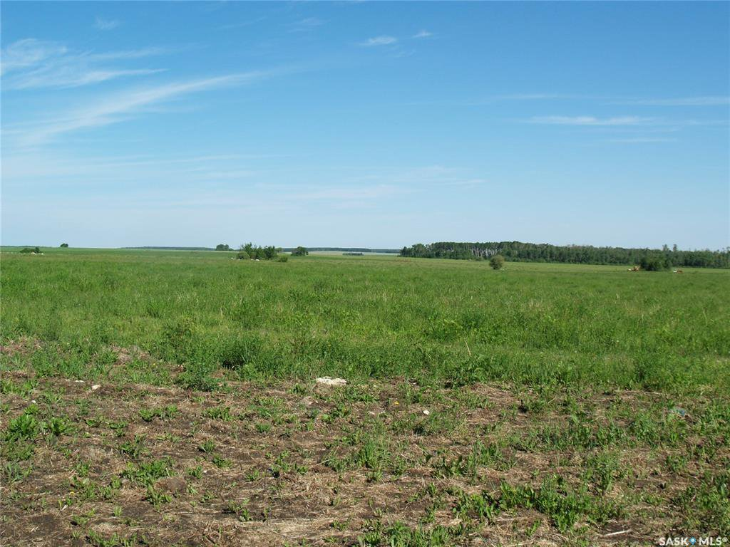 Main Photo: Angus Farm in Barrier Valley: Farm for sale (Barrier Valley Rm No. 397)  : MLS®# SK779165