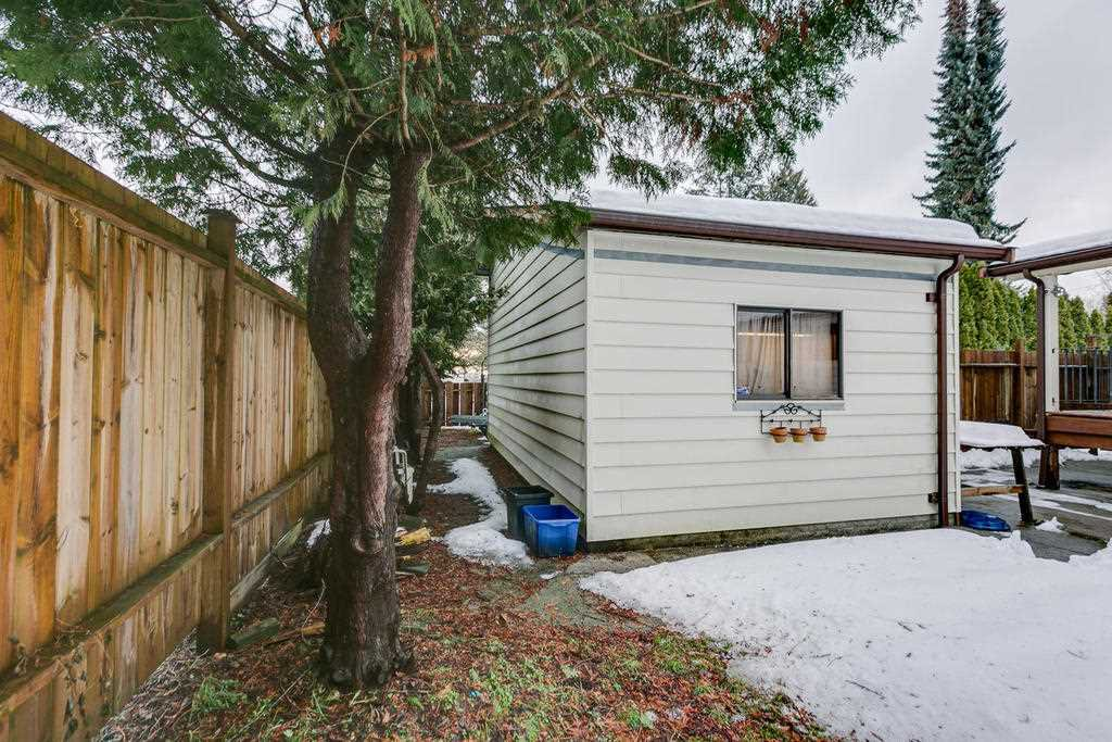 "Photo 20: Photos: 11592 195A Street in Pitt Meadows: South Meadows House for sale in ""CENTRAL MEADOWS"" : MLS®# R2130618"