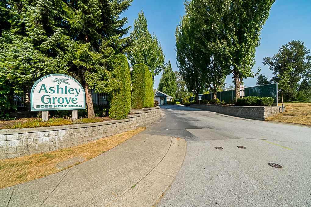 Main Photo: 23 9088 HOLT Road in Surrey: Queen Mary Park Surrey Townhouse for sale : MLS®# R2293708