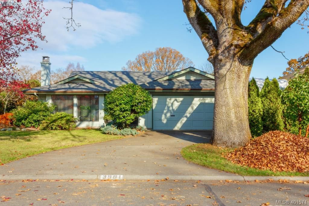 Main Photo: 3991 Hopesmore Drive in VICTORIA: SE Mt Doug Single Family Detached for sale (Saanich East)  : MLS®# 401571