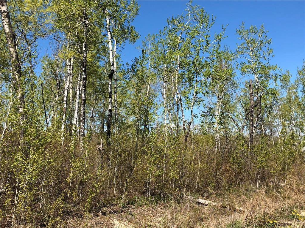 Main Photo: 6 Snow Goose Drive: Lake Manitoba Narrows Residential for sale (R19)  : MLS®# 1916200