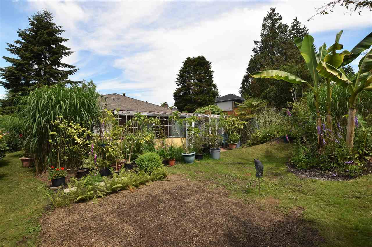 """Photo 18: Photos: 11314 ROYAL Crescent in Surrey: Royal Heights House for sale in """"ROYAL HEIGHTS"""" (North Surrey)  : MLS®# R2078455"""
