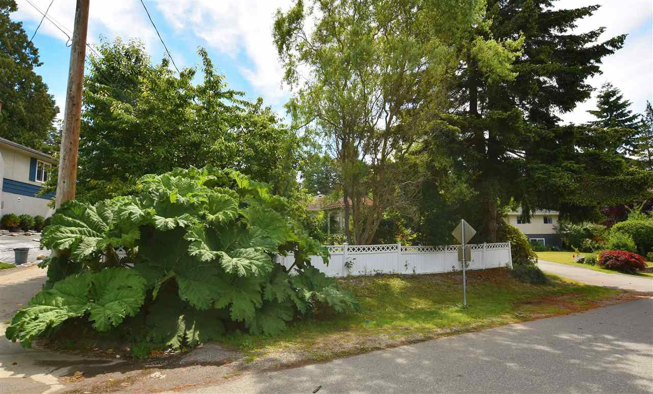 """Photo 2: Photos: 11314 ROYAL Crescent in Surrey: Royal Heights House for sale in """"ROYAL HEIGHTS"""" (North Surrey)  : MLS®# R2078455"""