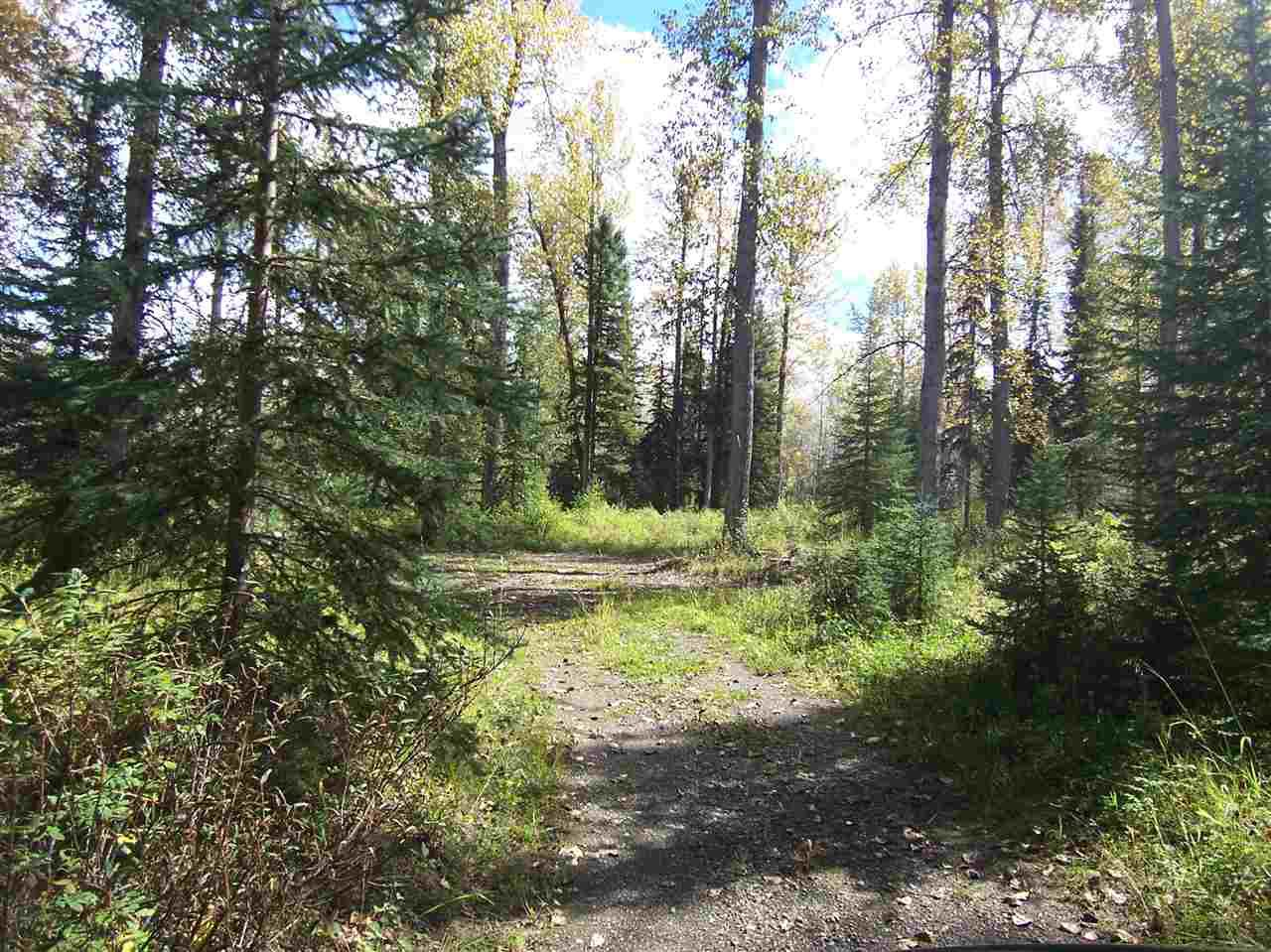 Photo 13: Photos: 4682 BARKERVILLE Highway in Quesnel: Quesnel - Rural North Land for sale (Quesnel (Zone 28))  : MLS®# R2105293