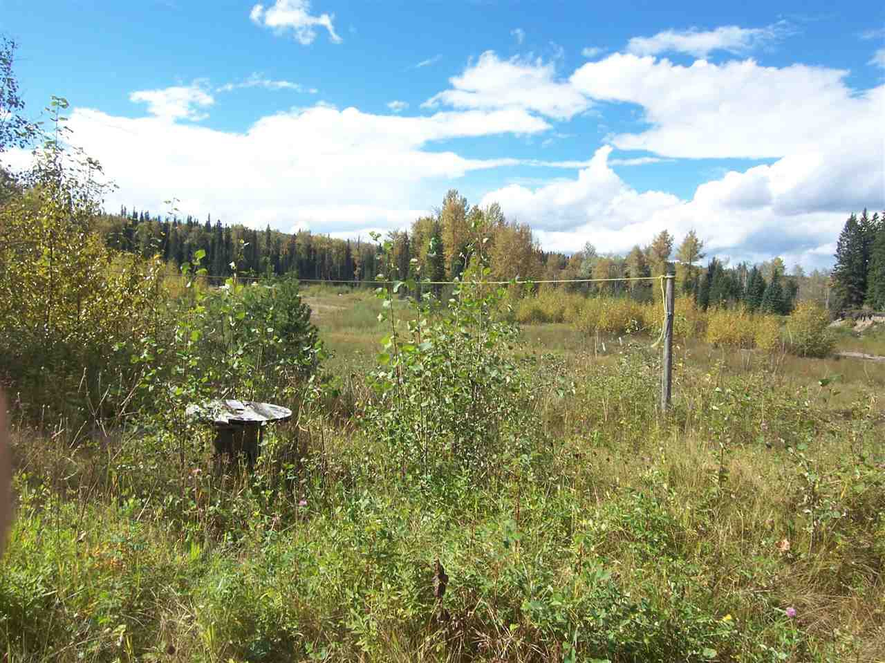 Photo 8: Photos: 4682 BARKERVILLE Highway in Quesnel: Quesnel - Rural North Land for sale (Quesnel (Zone 28))  : MLS®# R2105293