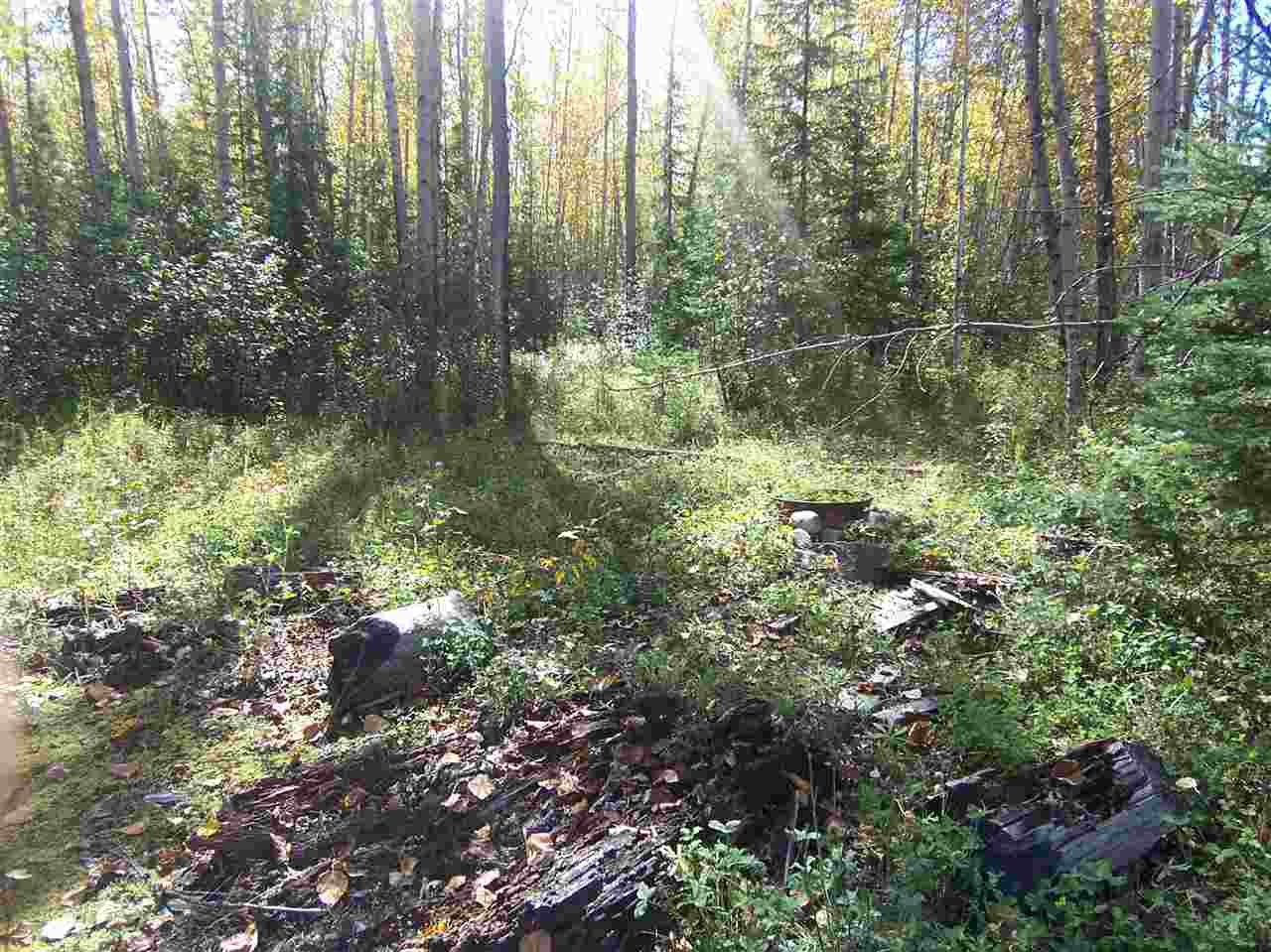 Photo 10: Photos: 4682 BARKERVILLE Highway in Quesnel: Quesnel - Rural North Land for sale (Quesnel (Zone 28))  : MLS®# R2105293
