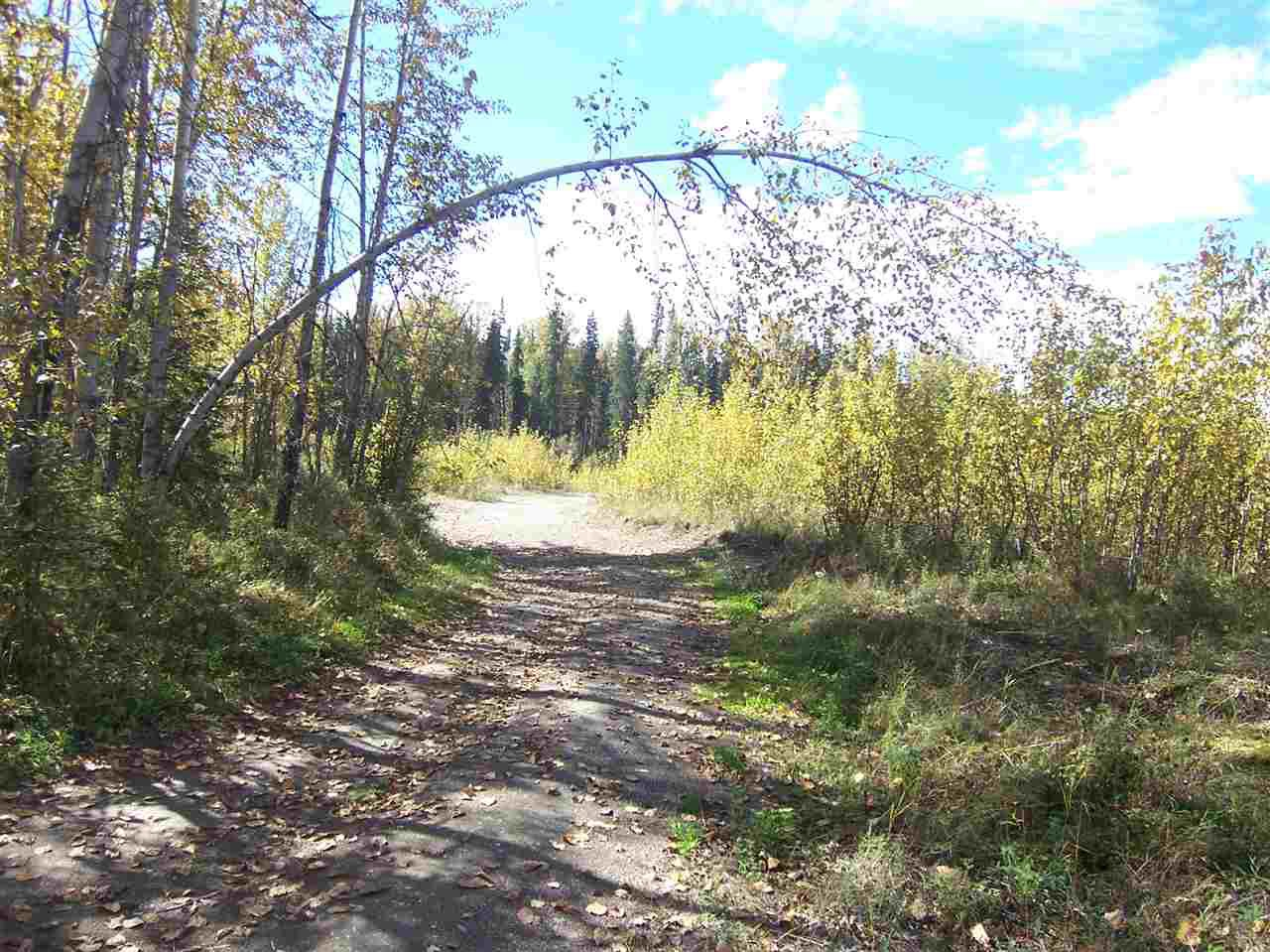 Photo 9: Photos: 4682 BARKERVILLE Highway in Quesnel: Quesnel - Rural North Land for sale (Quesnel (Zone 28))  : MLS®# R2105293