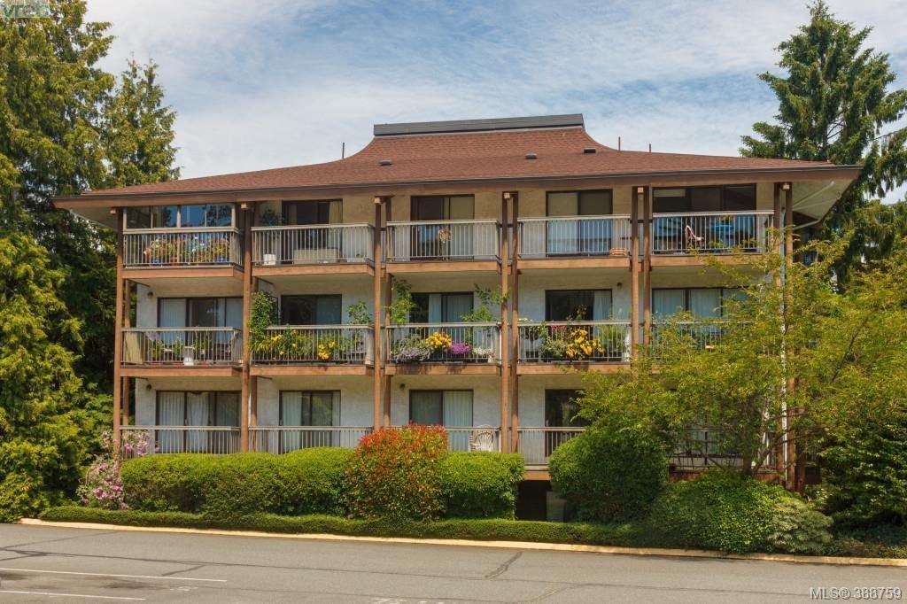 Main Photo: 217 1005 McKenzie Ave in VICTORIA: SE Quadra Condo for sale (Saanich East)  : MLS®# 781255