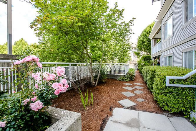 "Photo 17: Photos: 202 6359 198 Street in Langley: Willoughby Heights Condo for sale in ""ROSEWOOD"" : MLS®# R2134314"