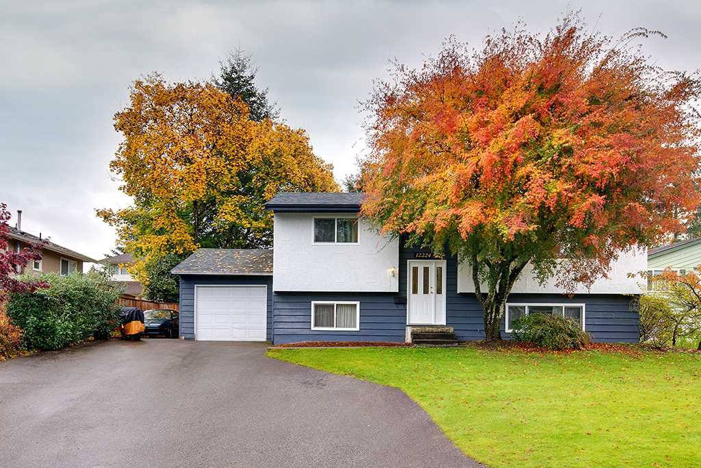 Main Photo: 12224 MCTAVISH Place in Maple Ridge: Northwest Maple Ridge House for sale : MLS®# R2319402