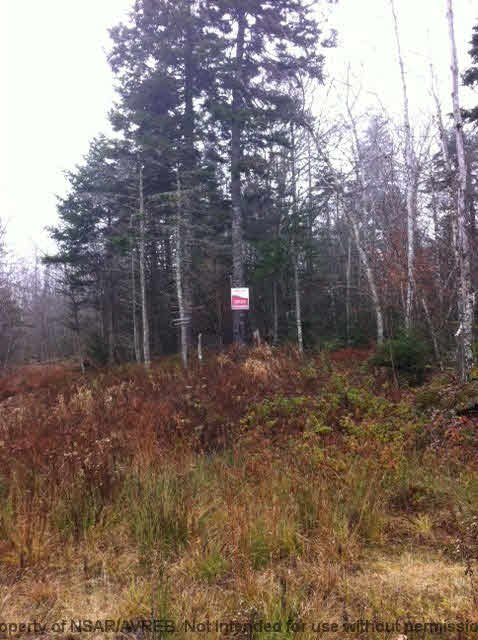Photo 4: Photos: LOT HIGHWAY 107 in West Petpeswick: 35-Halifax County East Vacant Land for sale (Halifax-Dartmouth)  : MLS®# 3348670