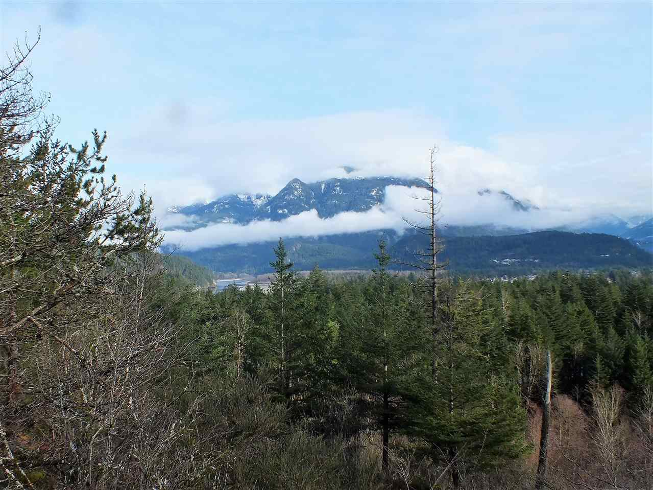 Main Photo: 21415 TRANS CANADA Highway in Hope: Hope Center Land for sale : MLS®# R2335002