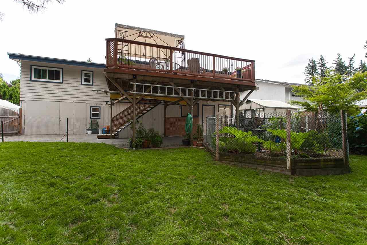 Photo 5: Photos: 2543 ALDERVIEW Street in Abbotsford: Central Abbotsford House for sale : MLS®# R2187032