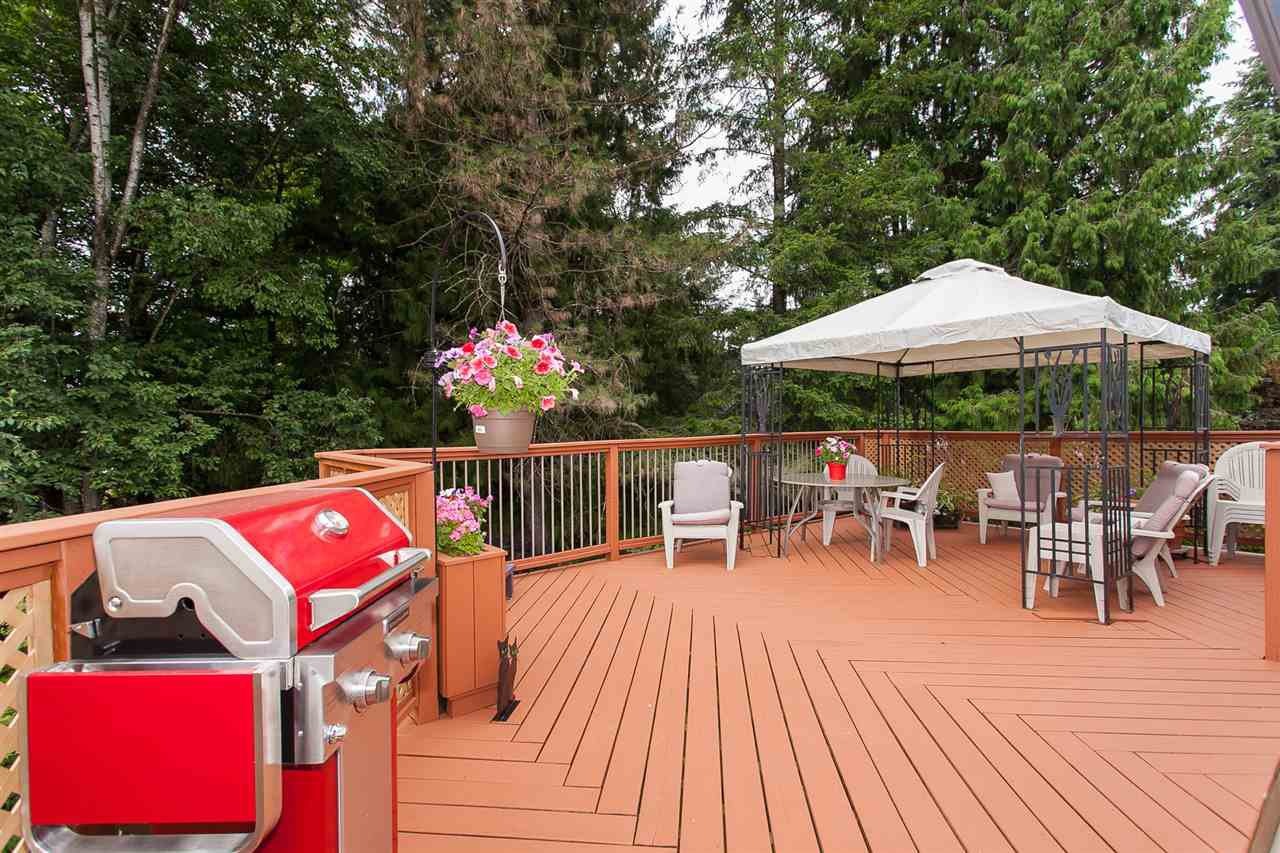 Photo 3: Photos: 2543 ALDERVIEW Street in Abbotsford: Central Abbotsford House for sale : MLS®# R2187032
