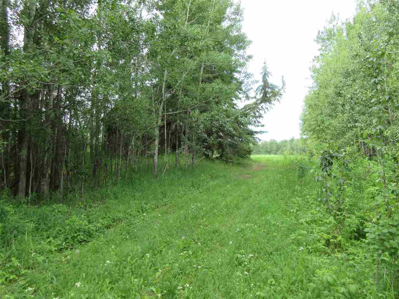 Main Photo: RR 214 Twp Rd 624: Rural Thorhild County Rural Land/Vacant Lot for sale : MLS®# E4150908