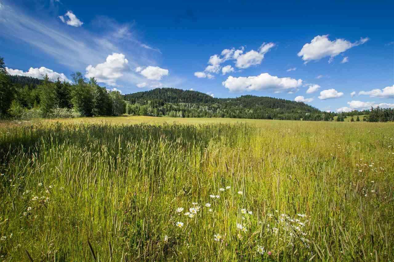 Main Photo: LOT 6 HARRIMAN N Road in Canim Lake: Canim/Mahood Lake Land for sale (100 Mile House (Zone 10))  : MLS®# R2369690