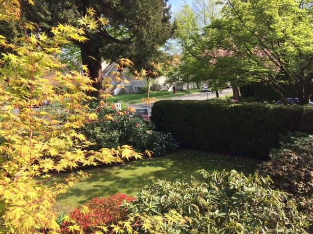 """Photo 19: Photos: 1903 W 14TH Avenue in Vancouver: Kitsilano Townhouse for sale in """"KITSILANO"""" (Vancouver West)  : MLS®# R2051736"""