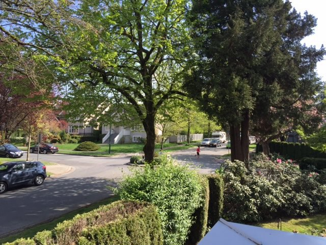 """Photo 20: Photos: 1903 W 14TH Avenue in Vancouver: Kitsilano Townhouse for sale in """"KITSILANO"""" (Vancouver West)  : MLS®# R2051736"""