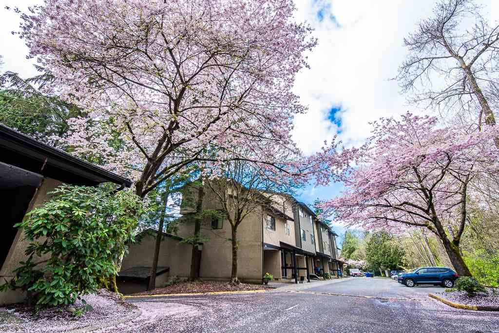 """Photo 1: Photos: 3472 NAIRN Avenue in Vancouver: Champlain Heights Townhouse for sale in """"COUNTRY LANE"""" (Vancouver East)  : MLS®# R2358449"""
